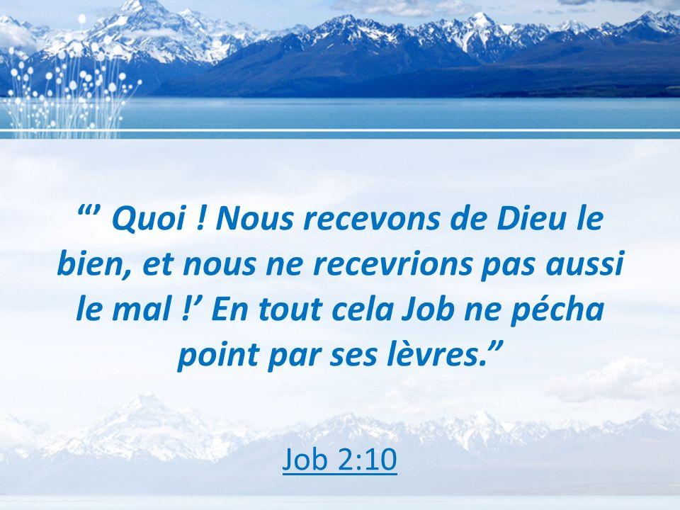 ' Quoi ! Nous recevons de Dieu le bien, et nous ne recevrions pas aussi le mal !' En tout cela Job ne pécha point par ses lèvres.