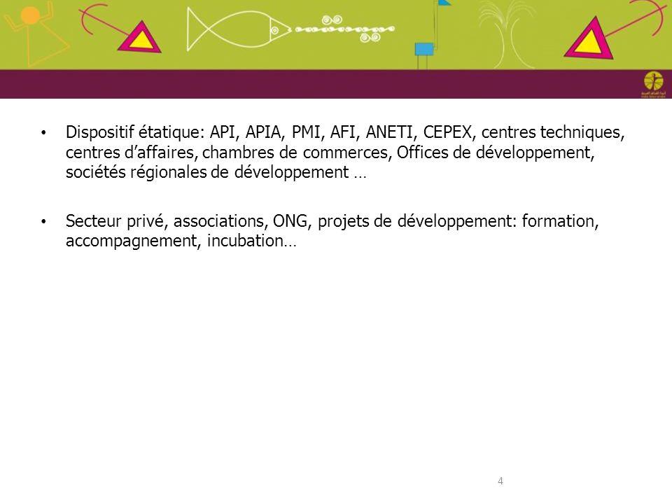 Dispositif étatique: API, APIA, PMI, AFI, ANETI, CEPEX, centres techniques, centres d'affaires, chambres de commerces, Offices de développement, sociétés régionales de développement …