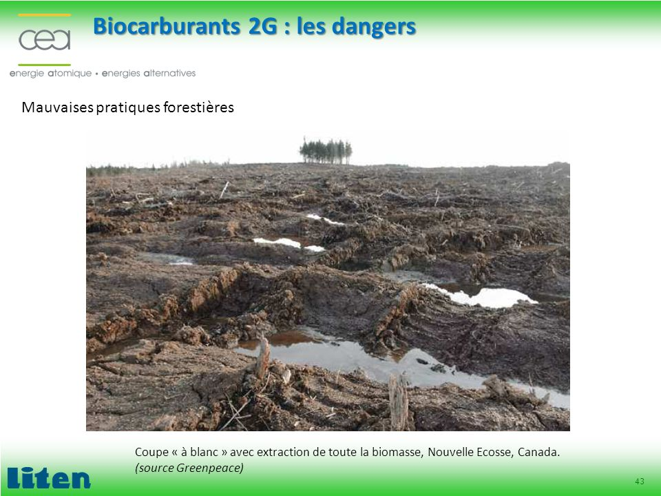 Biocarburants 2G : les dangers