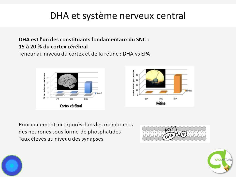 DHA et système nerveux central