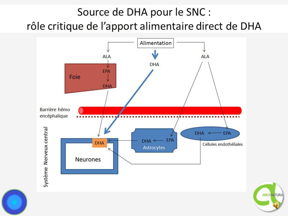 Source de DHA pour le SNC : rôle critique de l'apport alimentaire direct de DHA