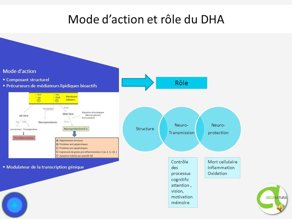 Mode d'action et rôle du DHA