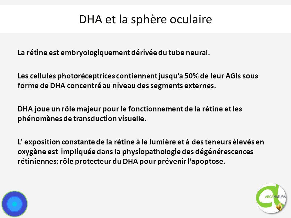 DHA et la sphère oculaire