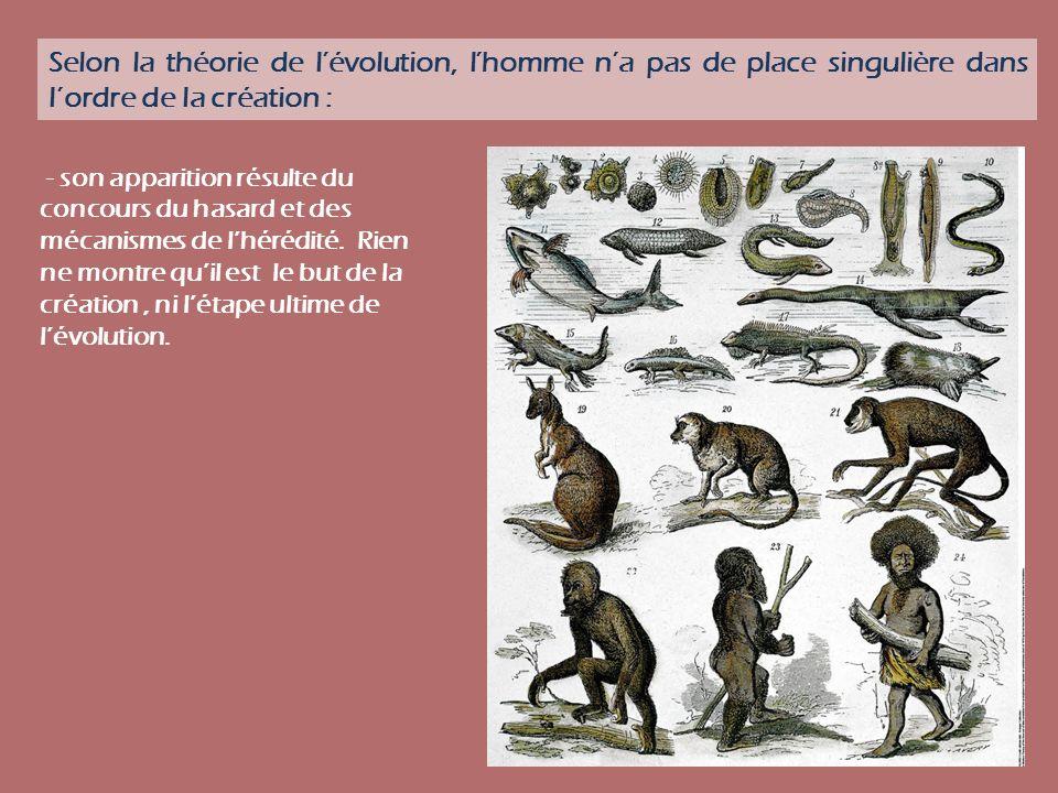 Selon la théorie de l'évolution, l'homme n'a pas de place singulière dans l'ordre de la création :