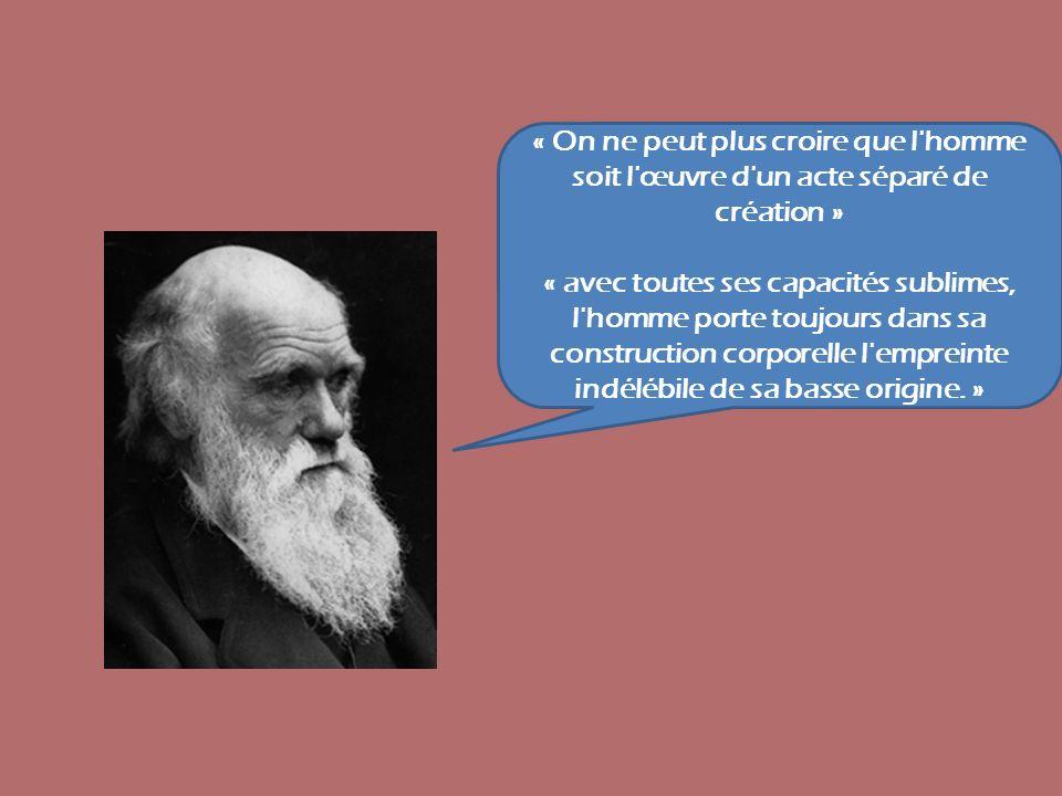 « On ne peut plus croire que l homme soit l œuvre d un acte séparé de création »