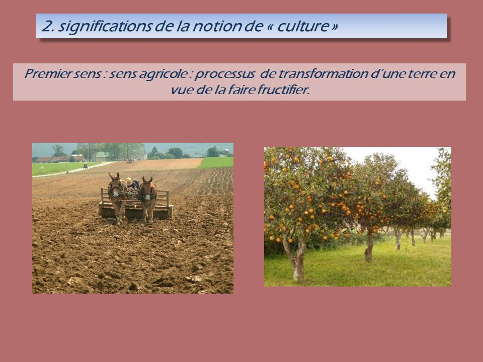 nature et culture philosophie pdf