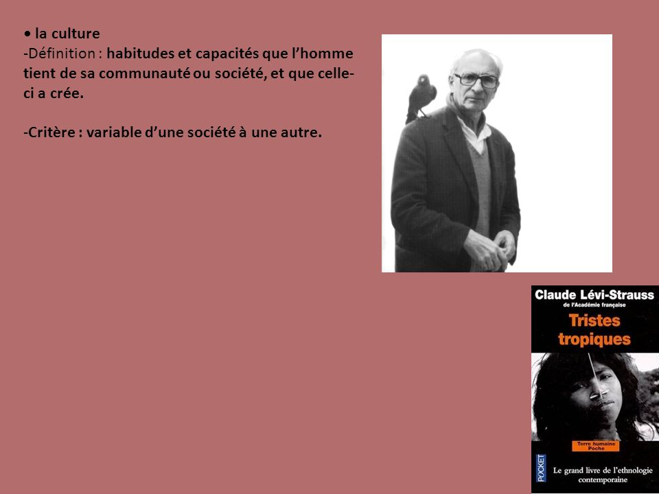 • la culture Définition : habitudes et capacités que l'homme tient de sa communauté ou société, et que celle-ci a crée.
