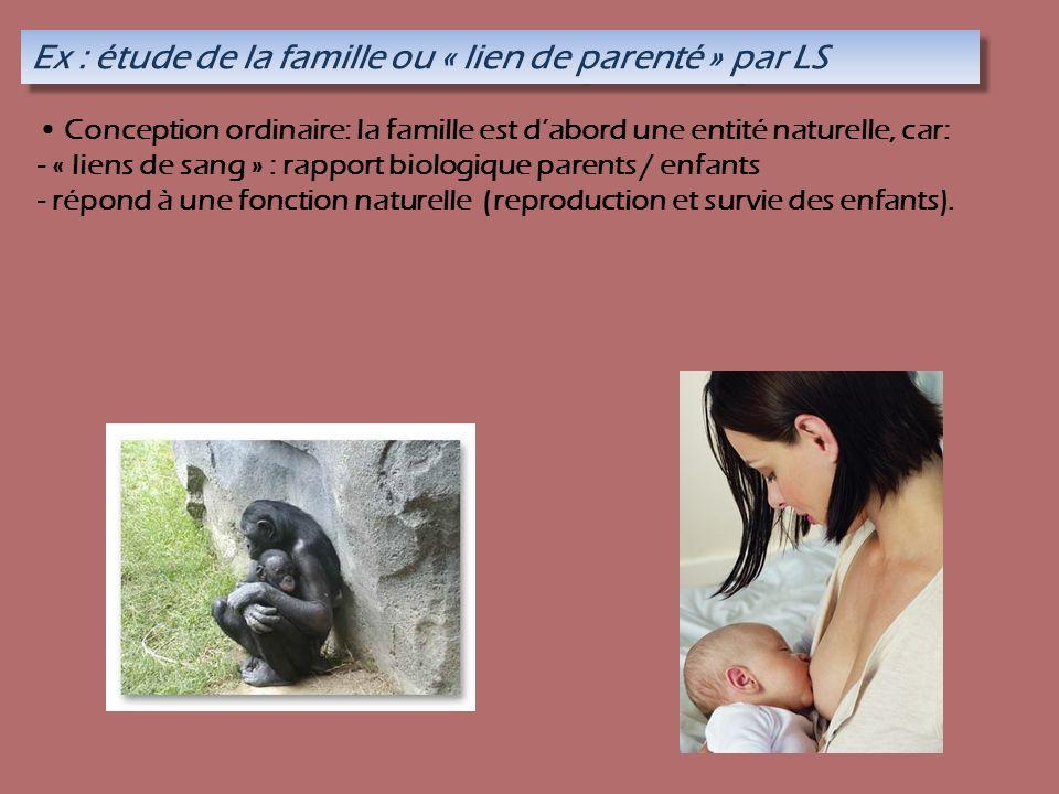 Ex : étude de la famille ou « lien de parenté » par LS