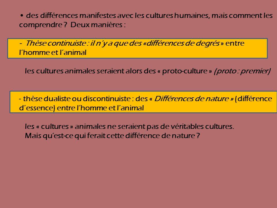 les « cultures » animales ne seraient pas de véritables cultures.