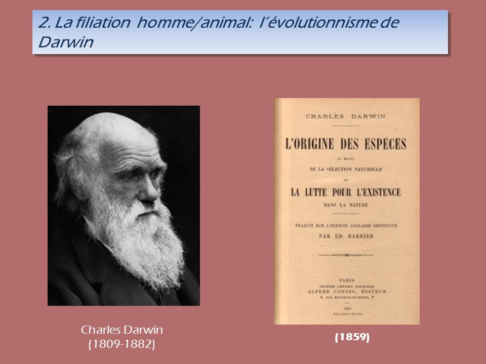 2. La filiation homme/animal: l'évolutionnisme de Darwin