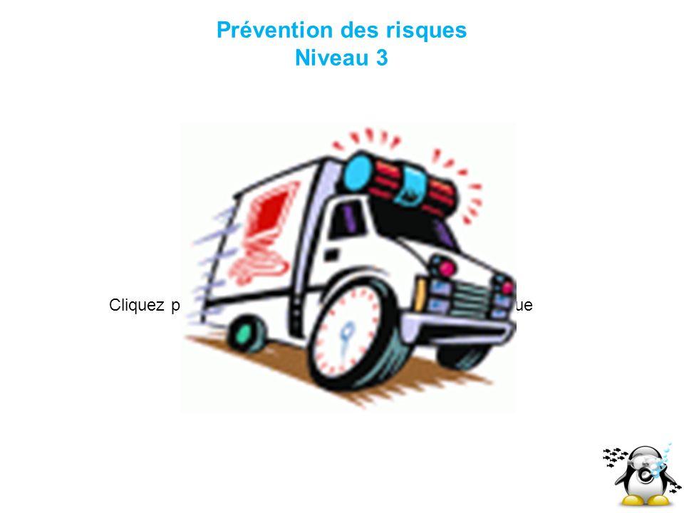 Prévention des risques Niveau 3