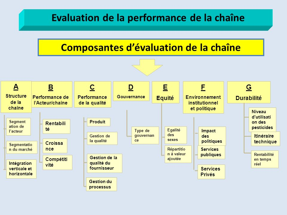 Evaluation de la performance de la chaîne