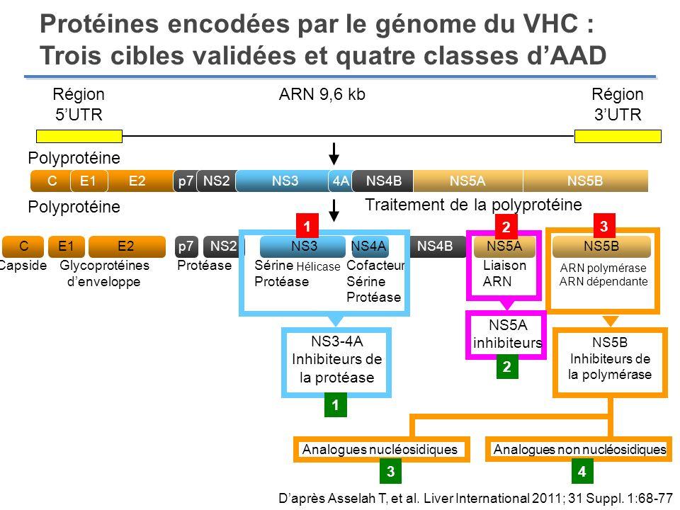 Protéines encodées par le génome du VHC : Trois cibles validées et quatre classes d'AAD