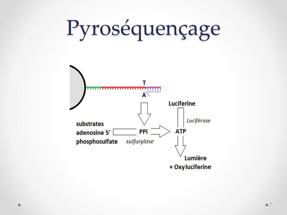 Pyroséquençage