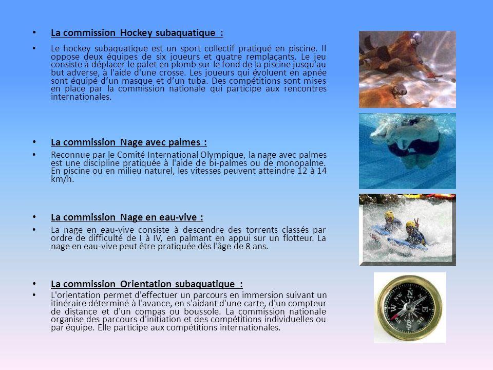 La commission Hockey subaquatique :