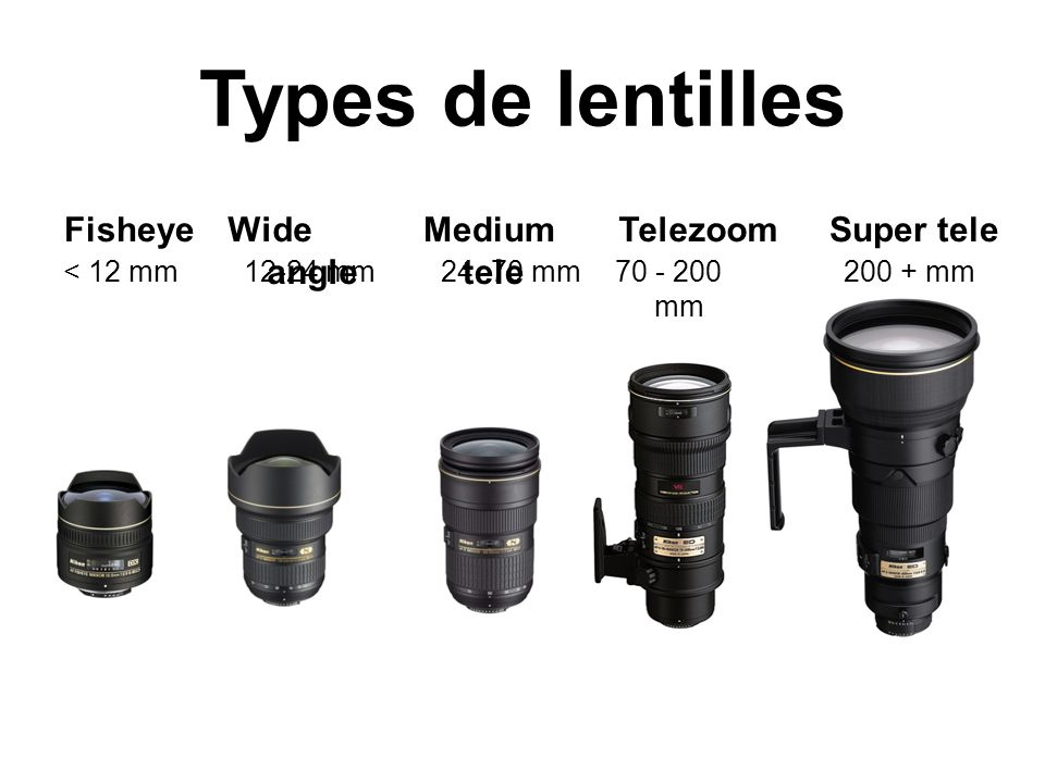 Types de lentilles Fisheye Wide angle Medium tele Telezoom Super tele