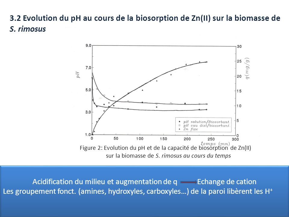 Acidification du milieu et augmentation de q Echange de cation