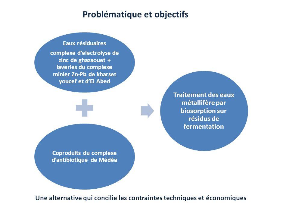Problématique et objectifs