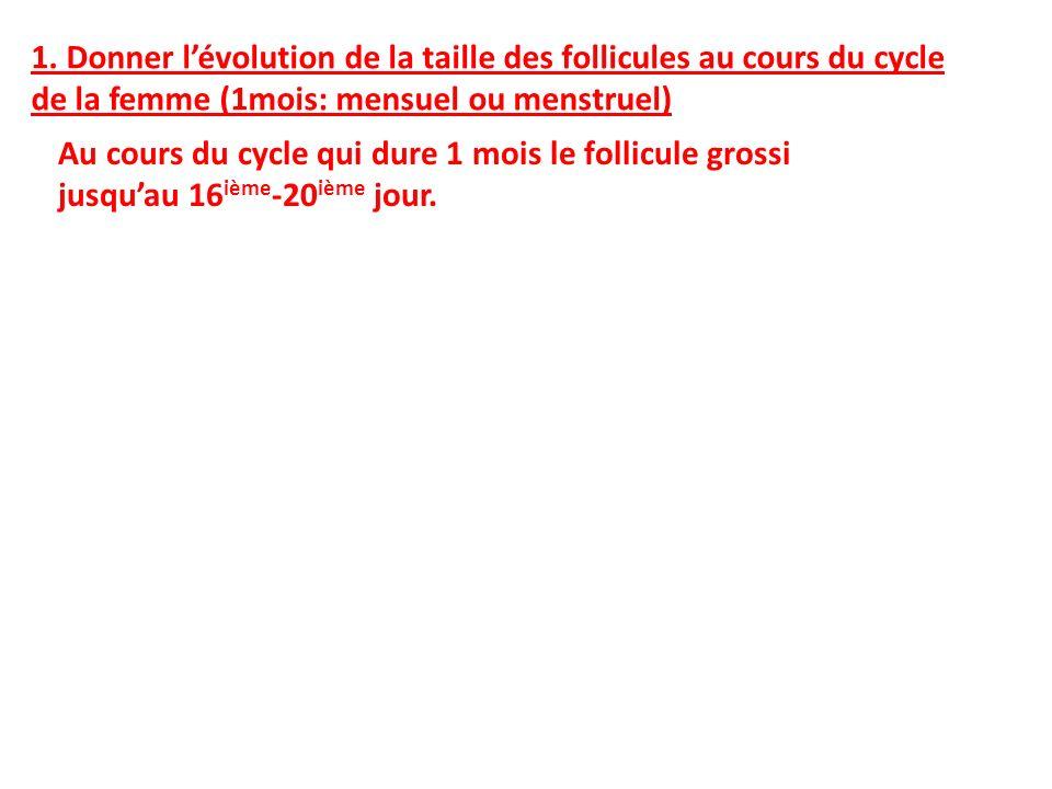 1. Donner l'évolution de la taille des follicules au cours du cycle de la femme (1mois: mensuel ou menstruel)