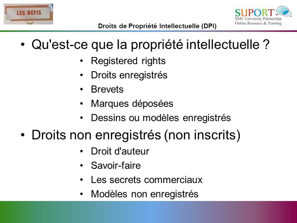 Droits de Propriété Intellectuelle (DPI)