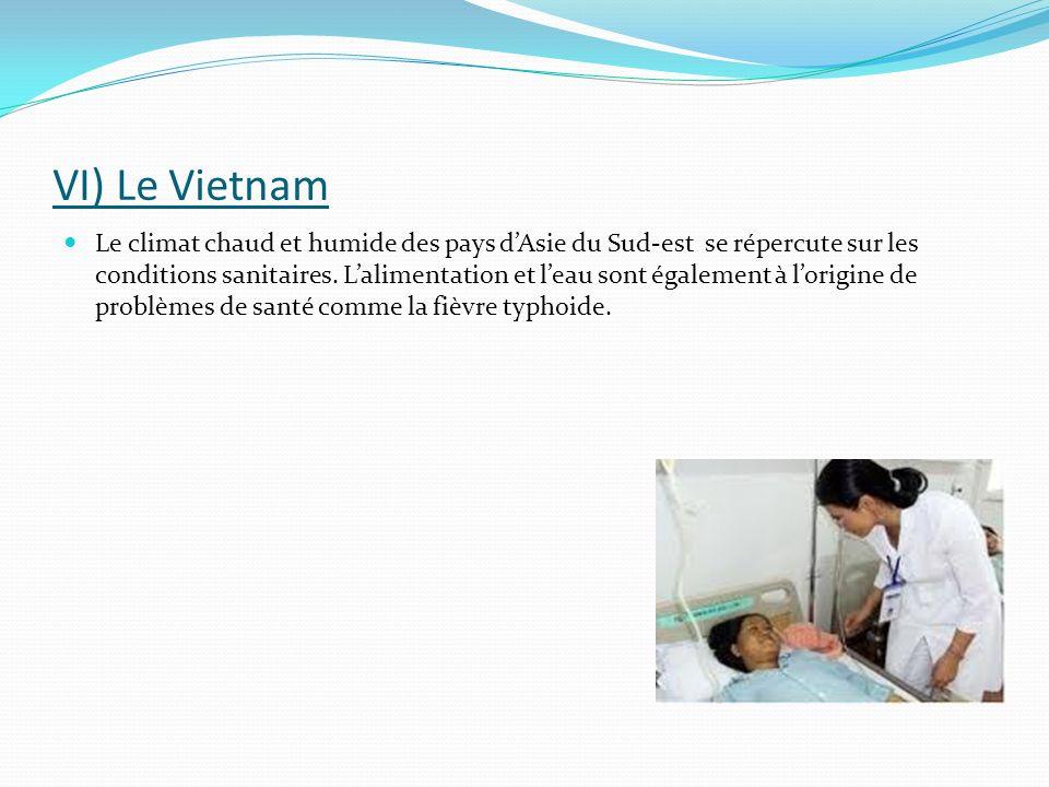 VI) Le Vietnam
