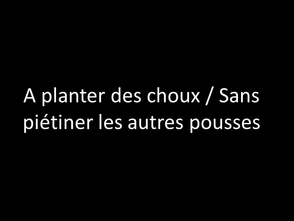 A planter des choux / Sans piétiner les autres pousses