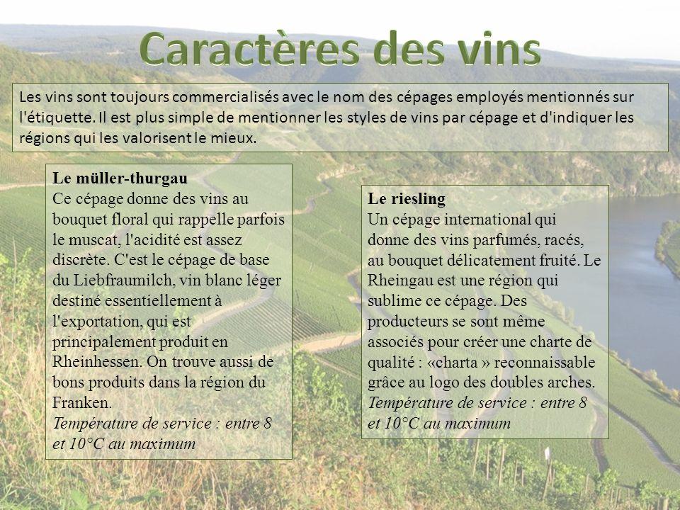 Caractères des vins