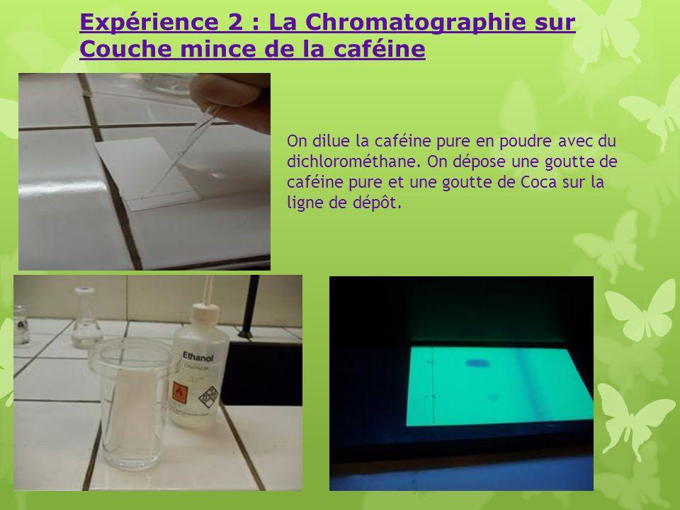 Expérience 2 : La Chromatographie sur Couche mince de la caféine