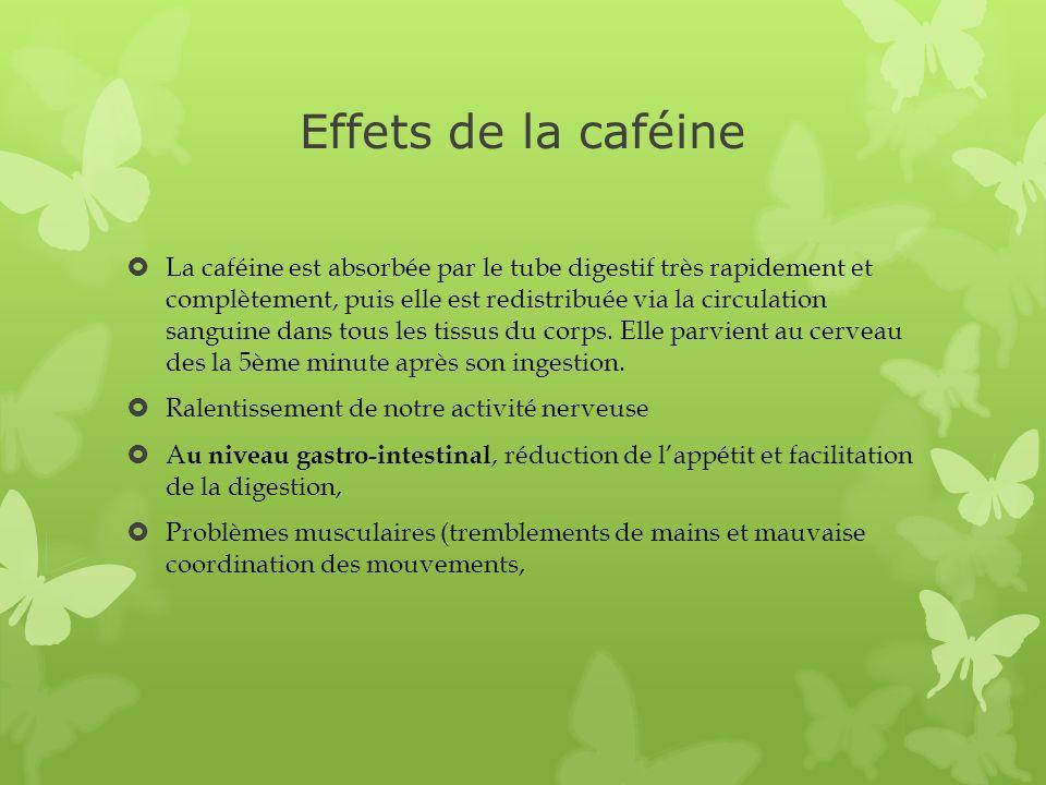 Effets de la caféine