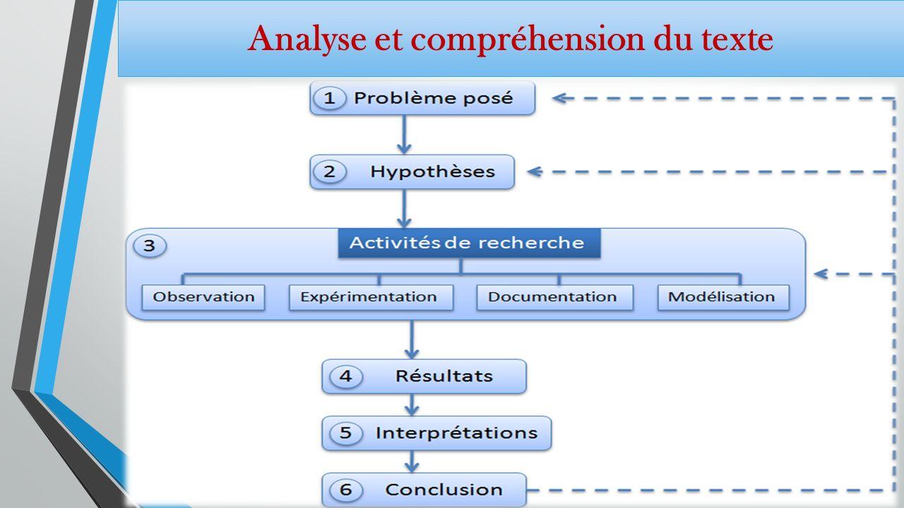 Analyse et compréhension du texte