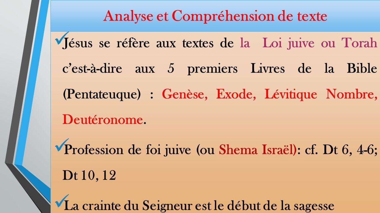 Analyse et Compréhension de texte