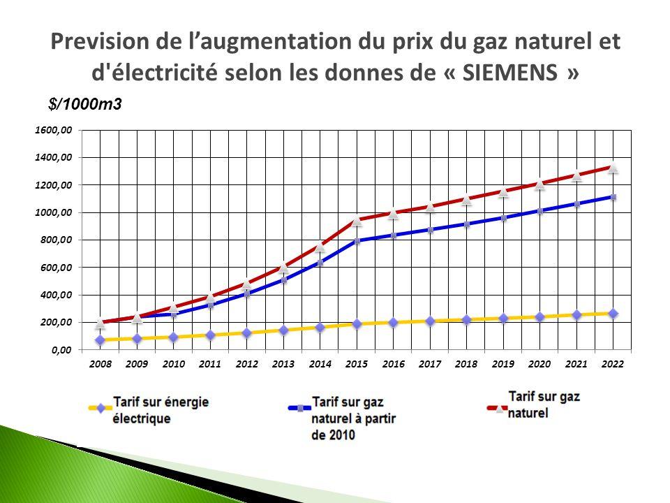 Prevision de l'augmentation du prix du gaz naturel et d électricité selon les donnes de « SIEMENS »