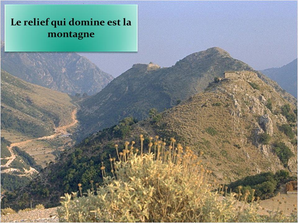 Le relief qui domine est la montagne