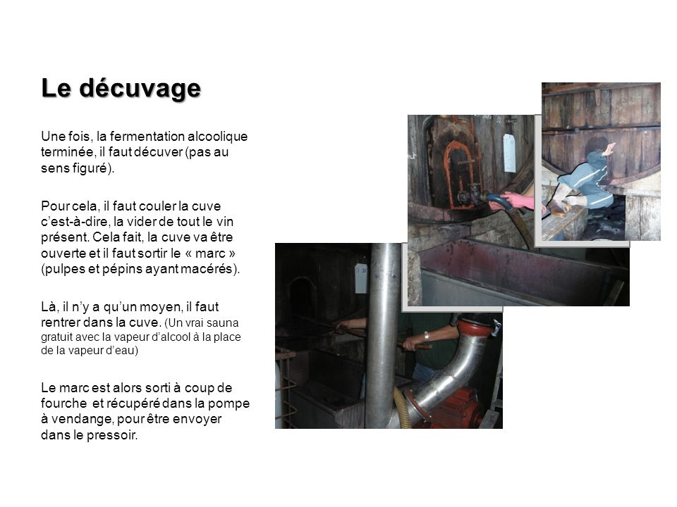 Le décuvage Une fois, la fermentation alcoolique terminée, il faut décuver (pas au sens figuré).