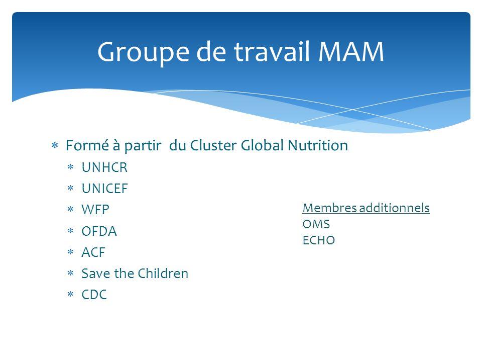 Groupe de travail MAM Formé à partir du Cluster Global Nutrition UNHCR