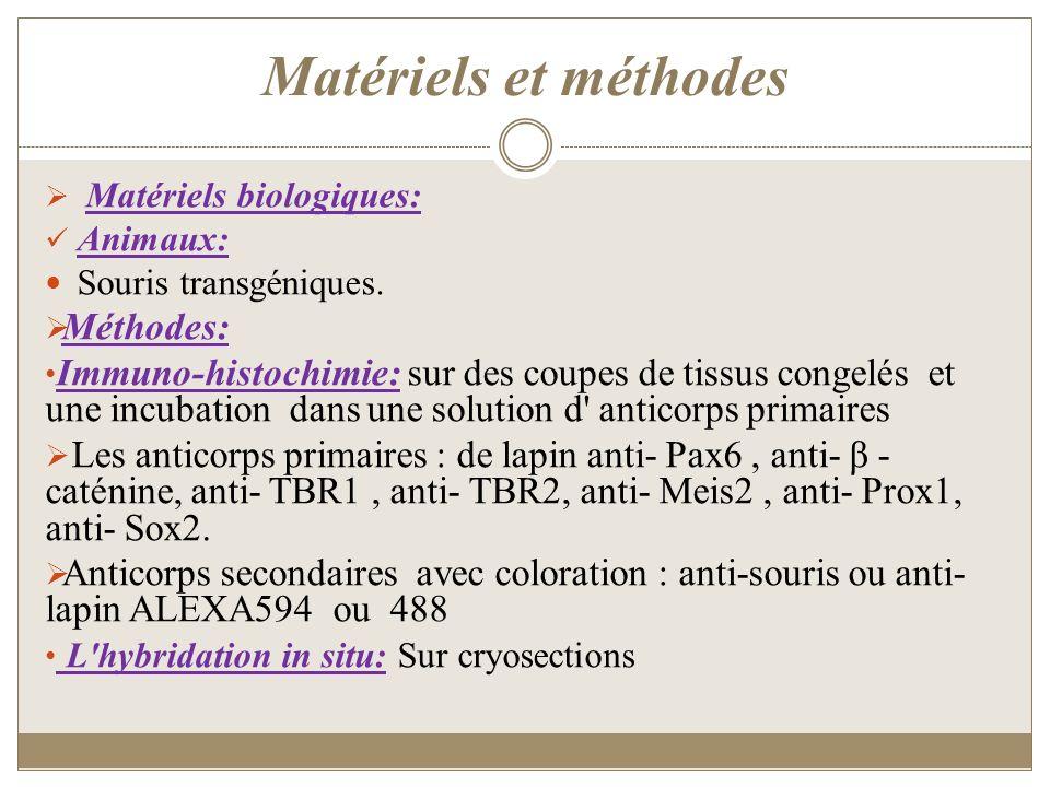 Matériels et méthodes Méthodes: