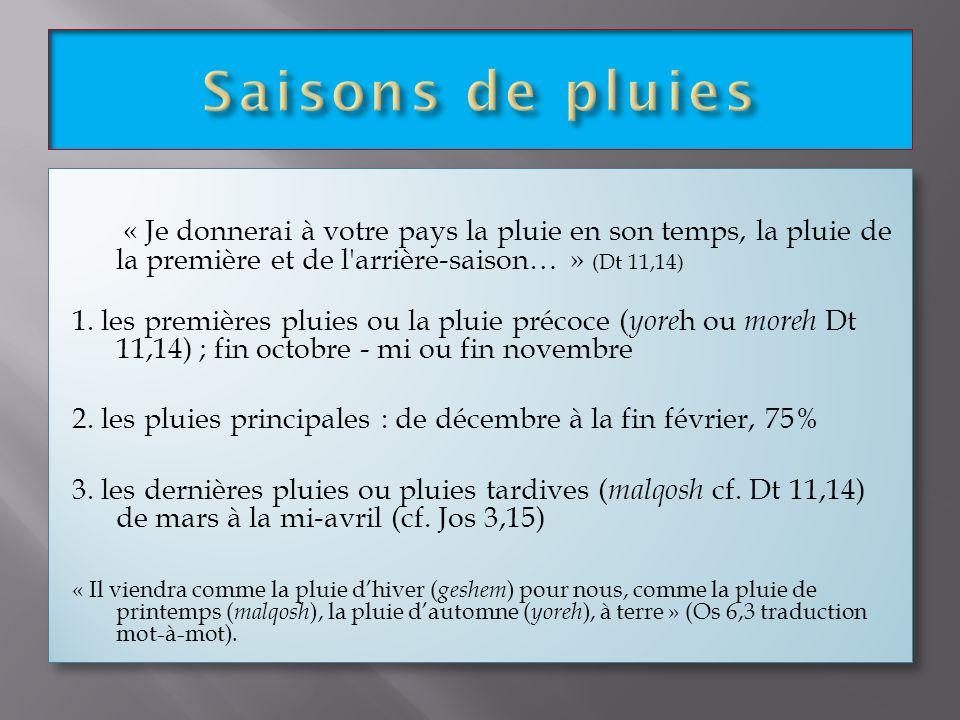 Saisons de pluies « Je donnerai à votre pays la pluie en son temps, la pluie de la première et de l arrière-saison… » (Dt 11,14)
