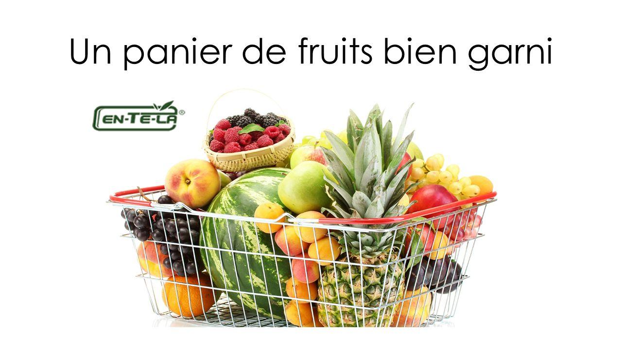 Un panier de fruits bien garni