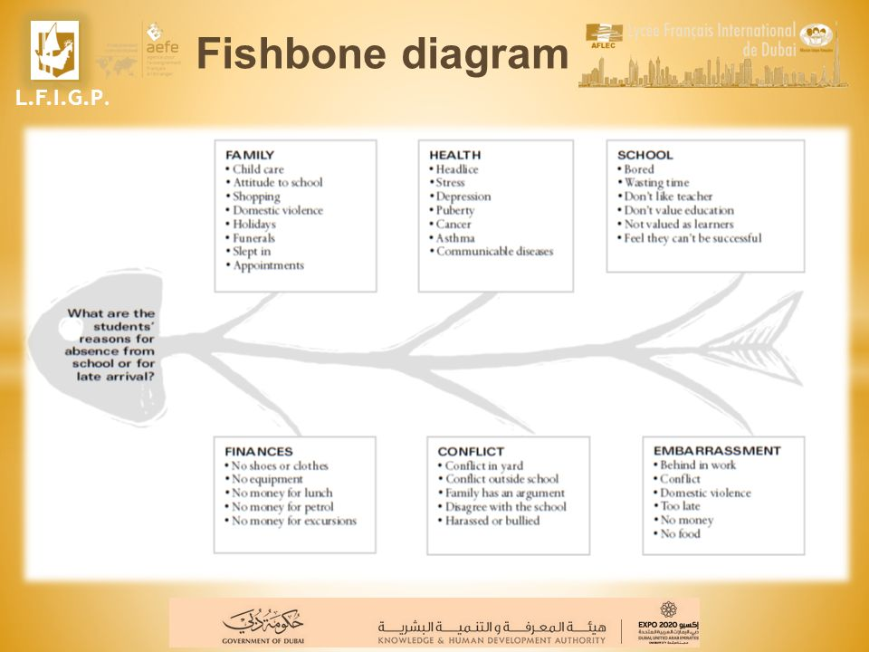 Fishbone diagram L.F.I.G.P.
