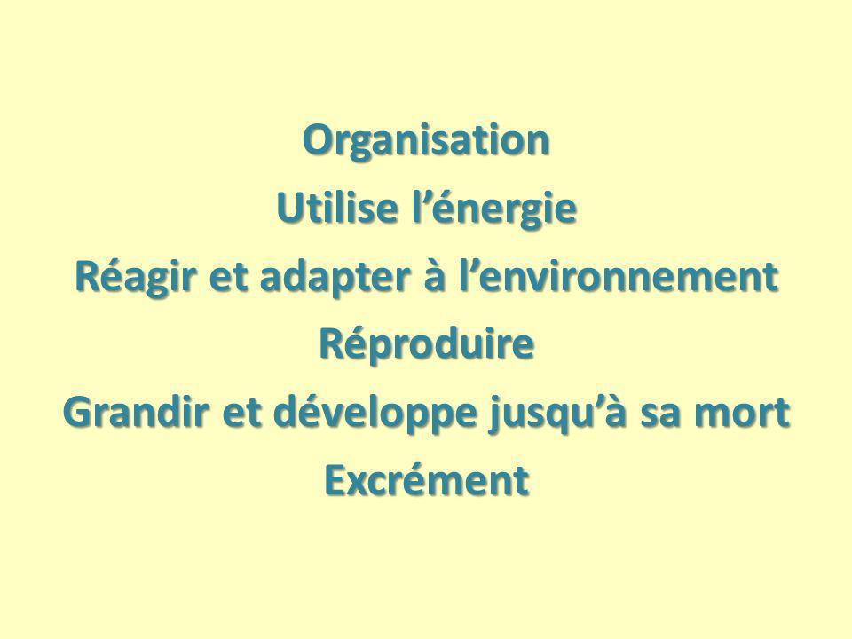 Organisation Utilise l'énergie Réagir et adapter à l'environnement Réproduire Grandir et développe jusqu'à sa mort Excrément