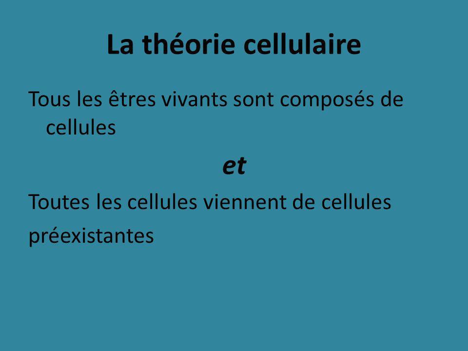 La théorie cellulaire et