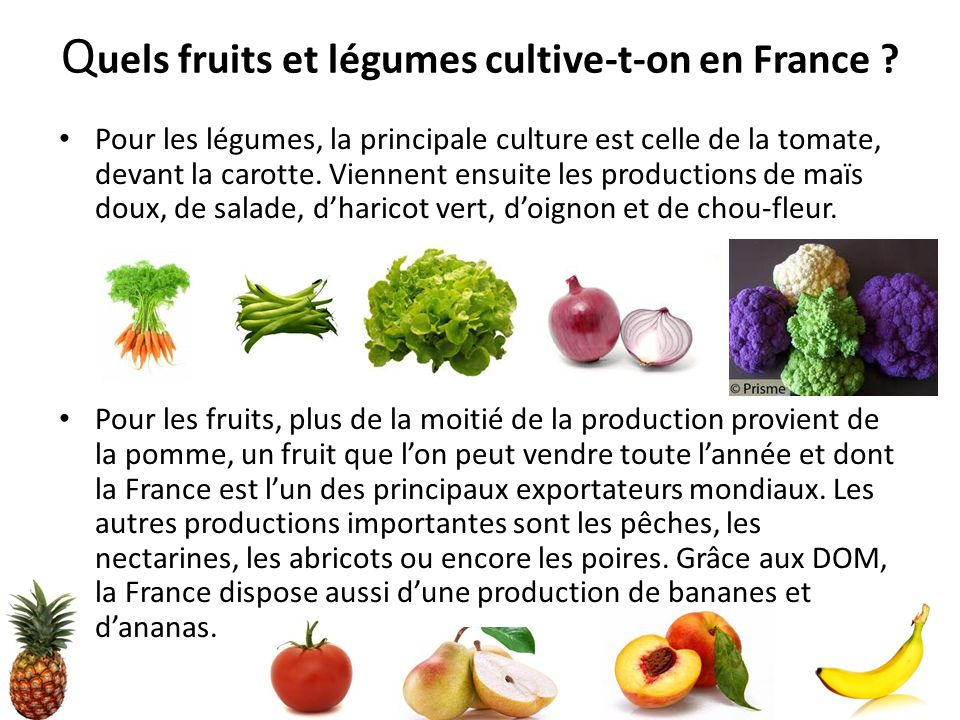 Quels fruits et légumes cultive-t-on en France