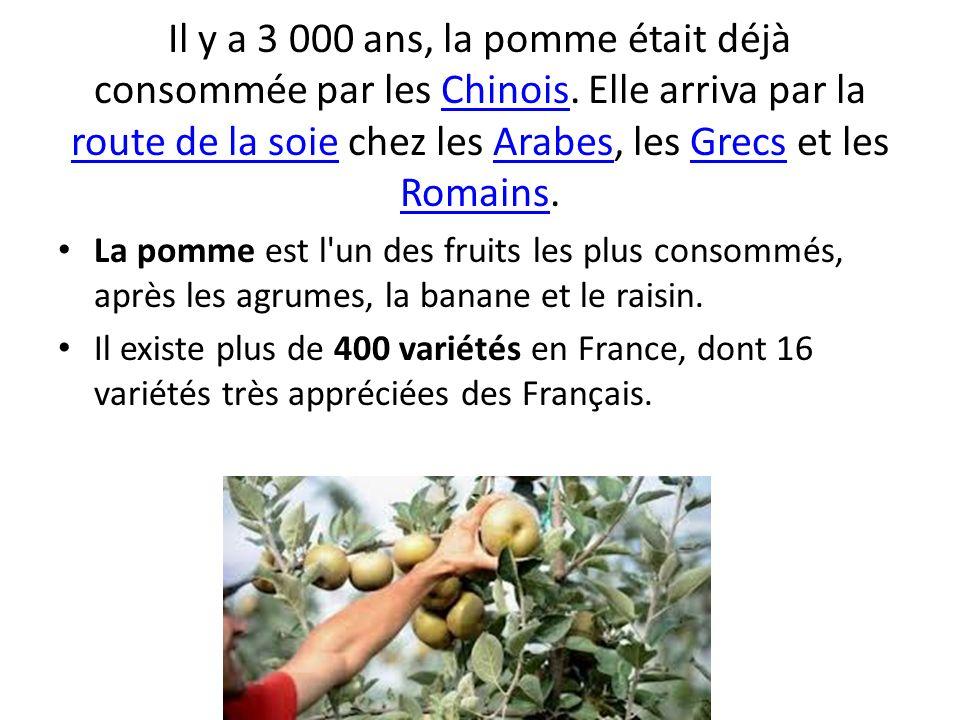 Il y a 3 000 ans, la pomme était déjà consommée par les Chinois