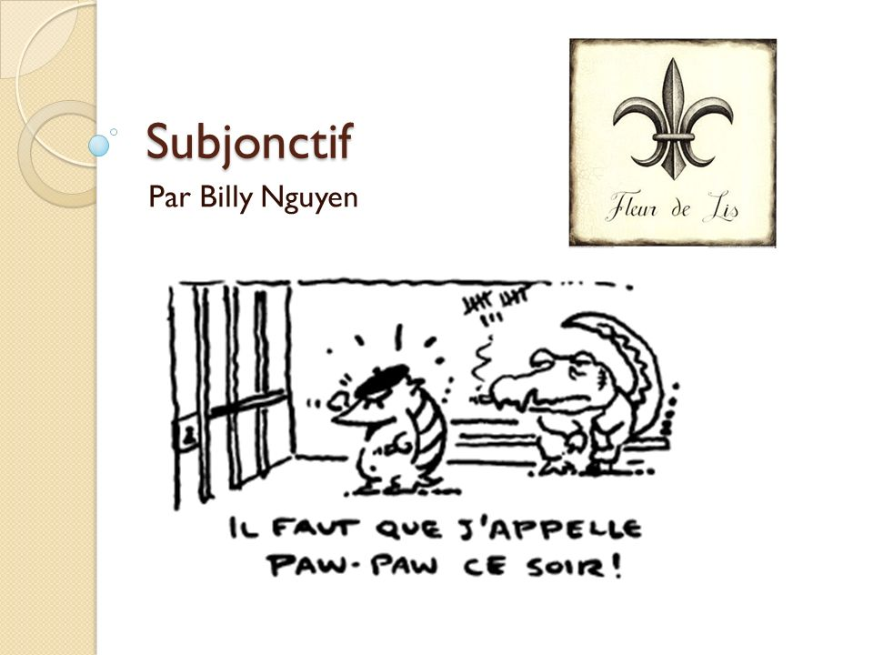 Subjonctif Par Billy Nguyen