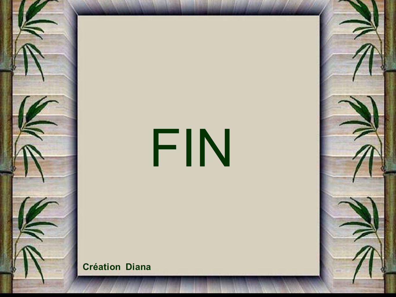 FIN Création Diana