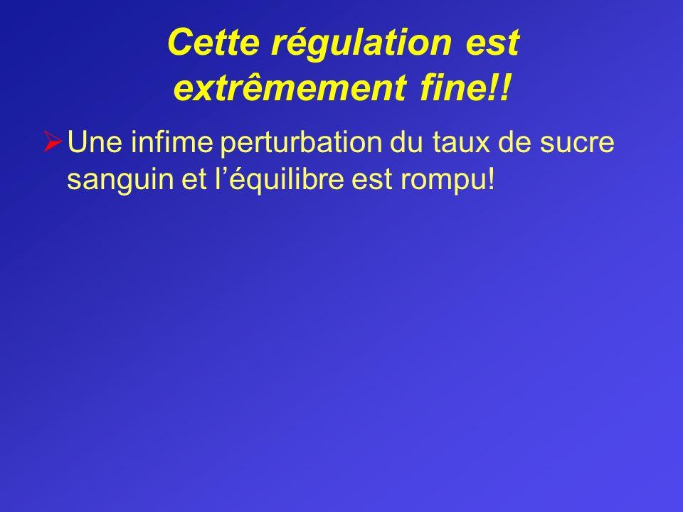 Cette régulation est extrêmement fine!!