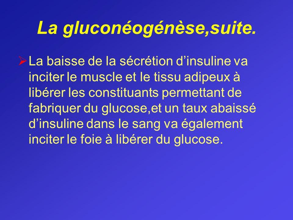 La gluconéogénèse,suite.