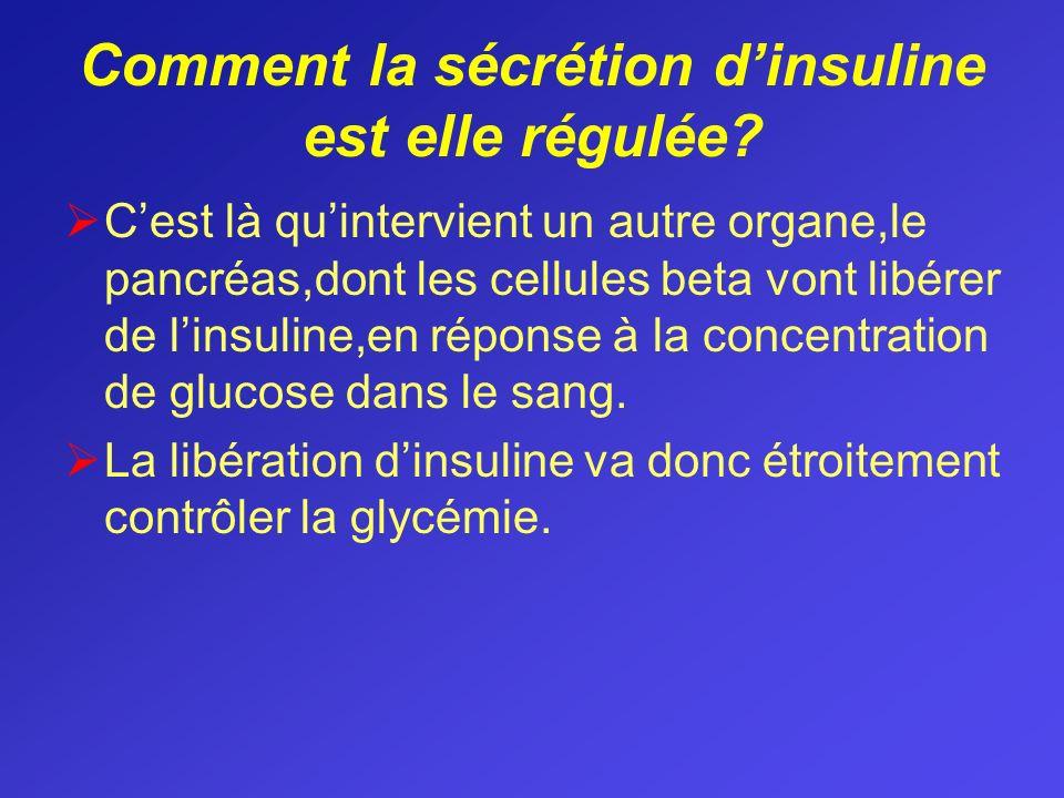 Comment la sécrétion d'insuline est elle régulée