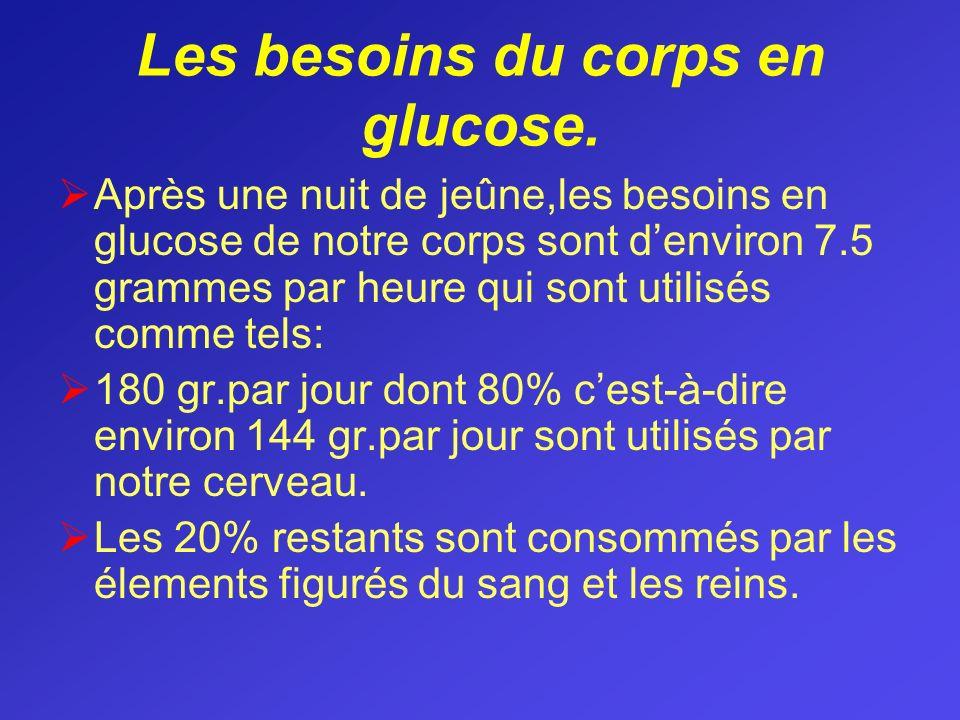 Les besoins du corps en glucose.