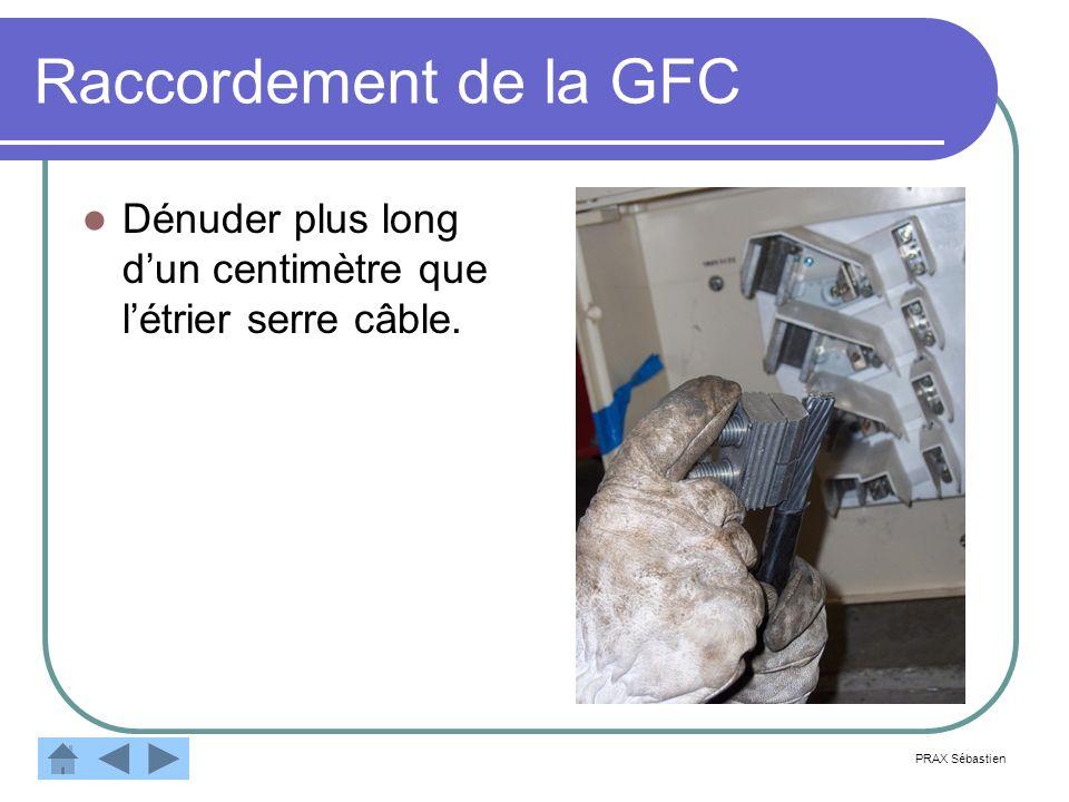 Raccordement de la GFC Dénuder plus long d'un centimètre que l'étrier serre câble. PRAX Sébastien